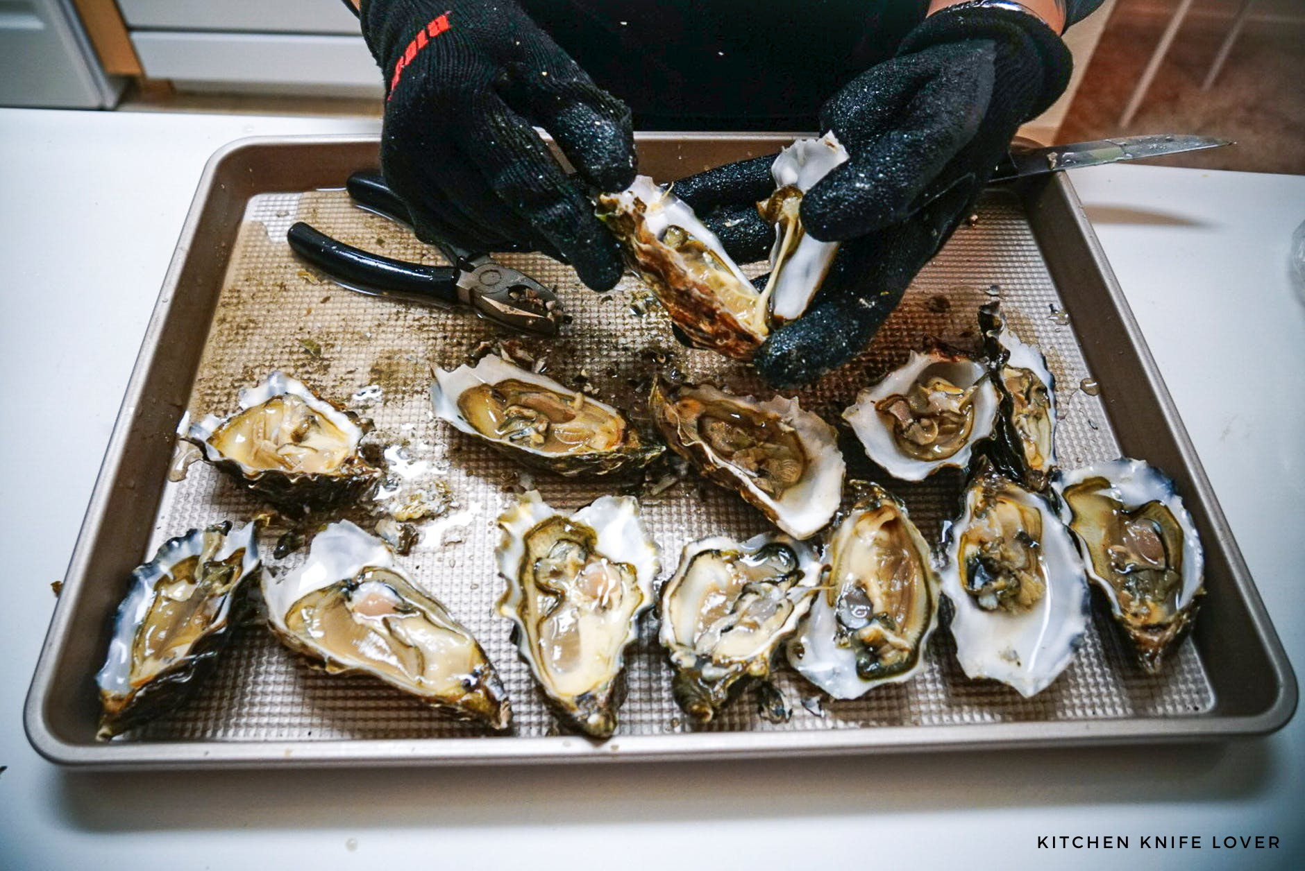 How to Open Oysters without an Oyster Knife; Easy Direction